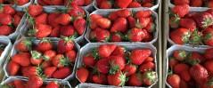 Erdbeer Eistee -Strudels
